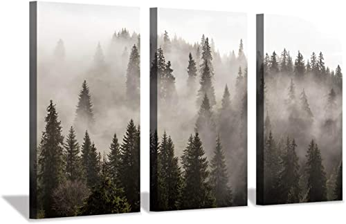 Hardy Gallery Foggy Forest Picture Wall Art: Landscape Painting Misty Pine Trees Artwork Print on Canva