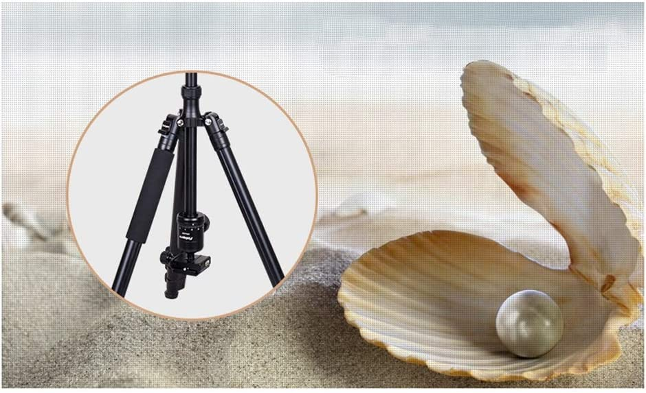 CJGXJZJ Camera Tripod Compact Light Aluminum Tripod Monopod with Quick Release Plate and Panoramic Ball Head for Travel Digital SLR Camera Black