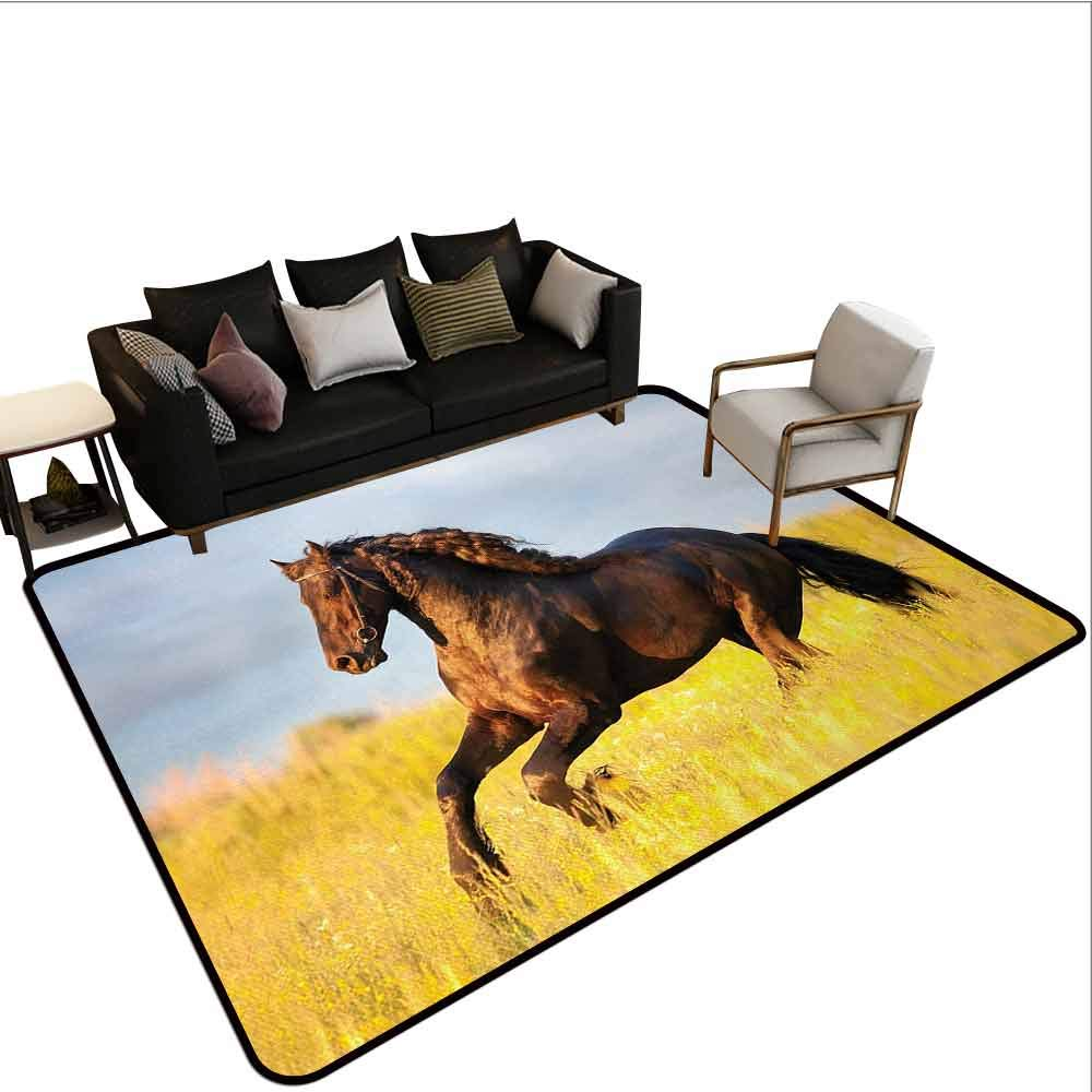 Transparent Printed Doormat Horses,Friesian Horse with Mane Gallops in Meadow Equestrian Mystery Vitality Horse,Yellow Brown Blue by MsShe