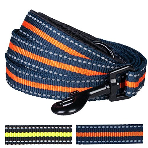 """Blueberry Pet Leashes For Dog 5/8"""" by 5-Feet Long Orange Stripe Dog Leash with Neoprene Padded Handle, Small"""