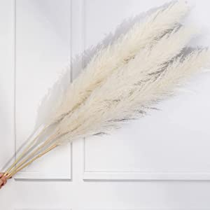 Natural Pampas Grass Large, Tall Pompass Grass Dried, Boho Decor for Wedding, Living Room, Home, Flower Arrangements - 42