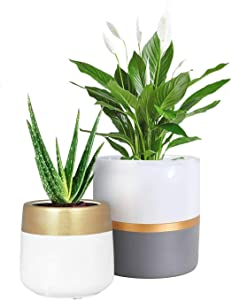 TIMEYARD Ceramic Planter Pots Indoor with Drainage Hole, Set of 2 Small Flower Pots Cylinder Containers with Gold and Grey Painting Modern Home Garden Decor, 6 Inch