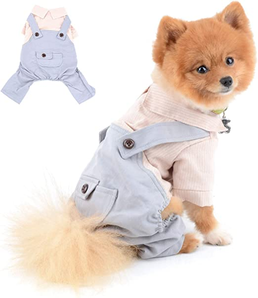 SELMAI Camisa Rayas para Perro con Pantalones Ropa para Perros Pequeños Medianos Mascotas Chihuahua 4 Piernas Trajes para Gatos Suave y Cómoda Ropa Perrito Uso Diario Primavera Verano Rosado M: Amazon.es: Productos