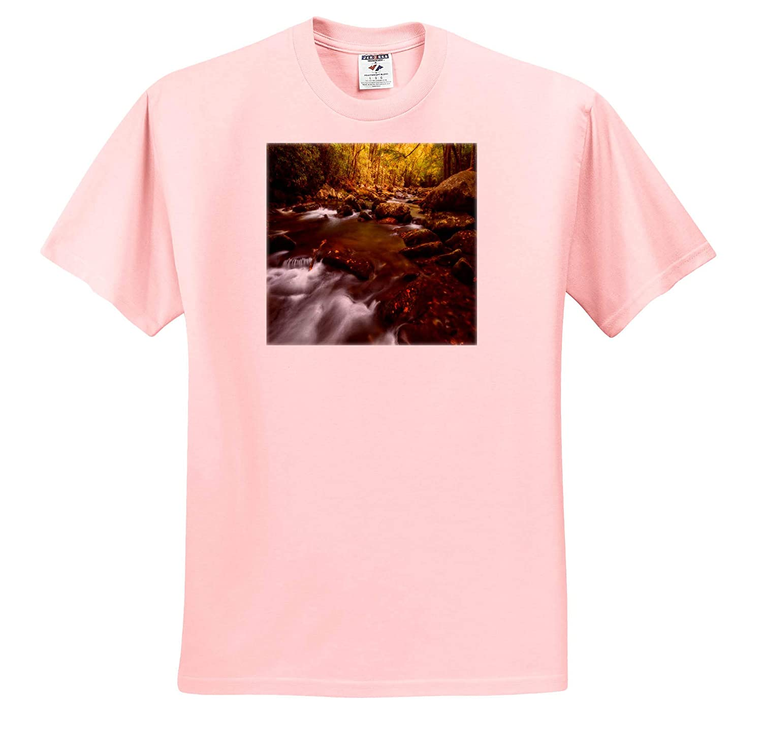 Adult T-Shirt XL ts/_309084 Leaves Shine in The Autumn Sun Along River Landscapes 3dRose Mike Swindle Photography