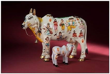 Vivaan Exim Kamdhenu Cow With Calf (26Cm X 10Cm X 21Cm) God Figure Hand Painted, Polyresin Statue Home Decor And Puja Article Showpiece