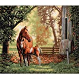 Dimensions Needlecrafts Counted Cross Stitch, Mare And Foal