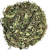 Lemon Balm Herbal Infusion Toronjil – Tea Value Pack (90g) Review