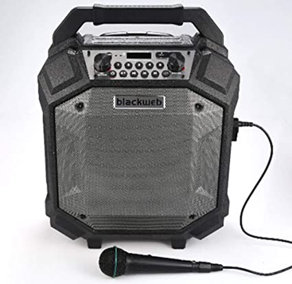 BlackWeb BWA10AA10 Bluetooth Party Speaker, Black: Amazon.ca