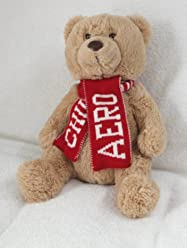 Aeropostale Teddy Bear Plush Toy 15
