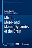Micro-, Meso- and Macro-Dynamics of the Brain (Research and Perspectives in Neurosciences) (English Edition)