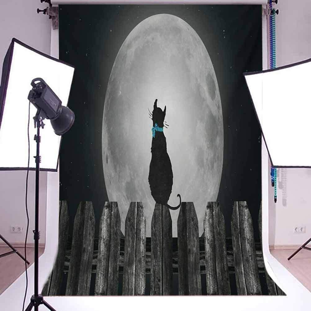 Moon 6.5x10 FT Backdrop Photographers,Silhouette of a Cat Looking to Full Moon While Sitting on The Fence Animal Background for Party Home Decor Outdoorsy Theme Vinyl Shoot Props Black Pale Grey Blue