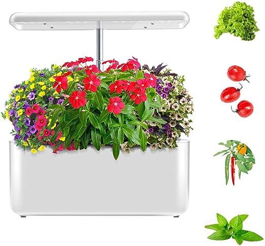 FDYD Kit de Interior de la Hierba del jardín, jardín hidropónico, iluminación LED del Temporizador automático automático, en el hogar Inteligente Jardín Hierbas Frescas y Verduras Planter: Amazon.es: Hogar