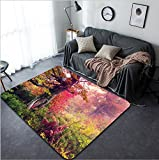 Vanfan Design Home Decorative 204774343 Majestic landscape with autumn trees in forest Carpathian Ukraine Europe Beauty world Retro filtered Toning effect Modern Non-Slip Doormats Carpet for Livi