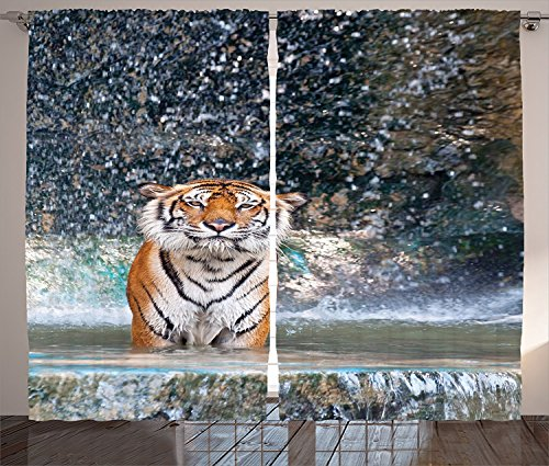 Birch Glass Waterfall (Natural Waterfall Decor Curtains Image Of A Large Majestic Tiger in The Waterfall Exotic Wildlife Animal in Nature Living Room Bedroom Decor 2 Panel Set Multi)