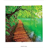 Custom printed Throw Blanket with House Decor Collection Wooden Path in National Park in Plitvice in Croatia Hill Lake Waterfall Peaceful Picture Lawn Green Super soft and Cozy Fleece Blanket