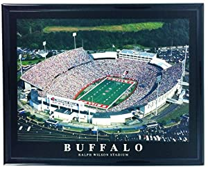 NFL Framed Football Buffalo Bills Ralph Wilson Stadium Wall Art F7568A