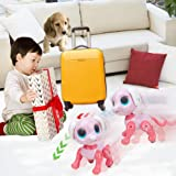 BIRANCO. Updated 2019 Smart Puppy - Remote Control, Gesture Control, STEM Programmable Actions, Lights and Sounds Electronic Pets Dog Toys, Ages 3 and Up