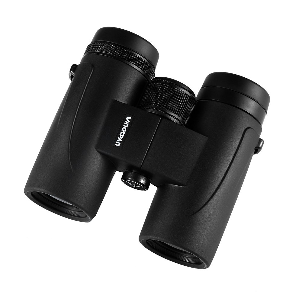 Wingspan Optics WingSpotter HD 8X32 Compact Binoculars for Bird Watching. Extra-Wide Field of View. Phase Correction Provides Vibrant Color, Clarity, and Brightness Close Up and Far Away. Waterproof