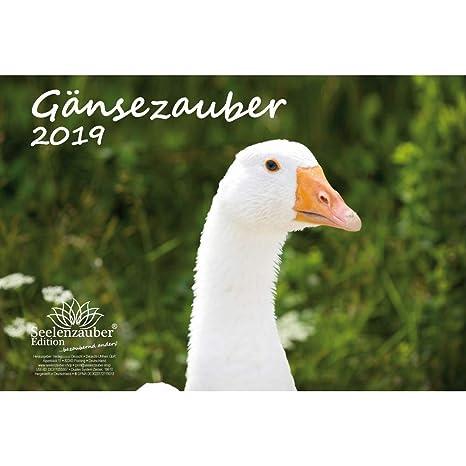 Cartoline Ch Calendario.Magia D Oca Din A4 Calendario 2019 Uccelli Oca D Oca