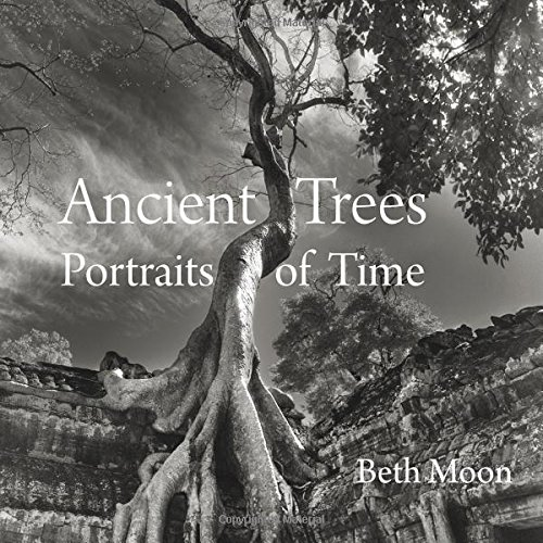 Ancient Trees: Portraits of Time [Beth Moon] (Tapa Dura)