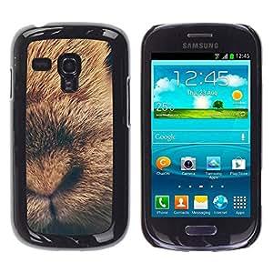 TopCaseStore / la caja del caucho duro de la cubierta de protección de la piel - Rabbit Baby Fur Animal - Samsung Galaxy S3 MINI NOT REGULAR! I8190 I8190N
