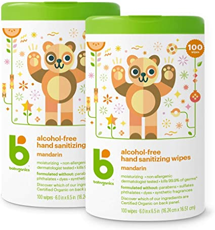 Babyganics Alcohol Free Hand Sanitizer Wipes Mandarin 100 Count
