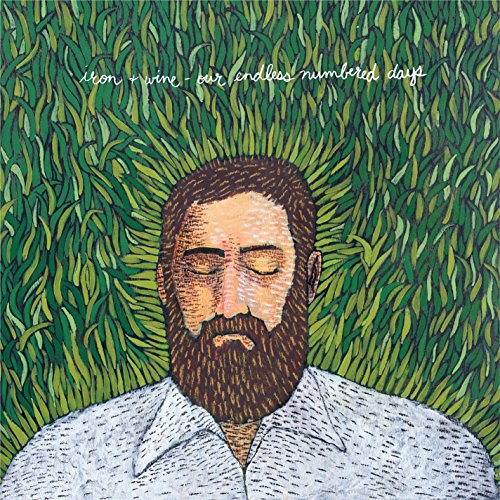 Cassette : Iron & Wine - Our Endless Numbered Days (Cassette)