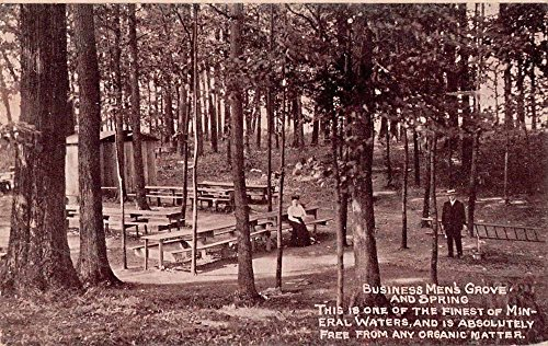 Business Men's Grove and Spring Scenic View Antique Postcard J66975 ()