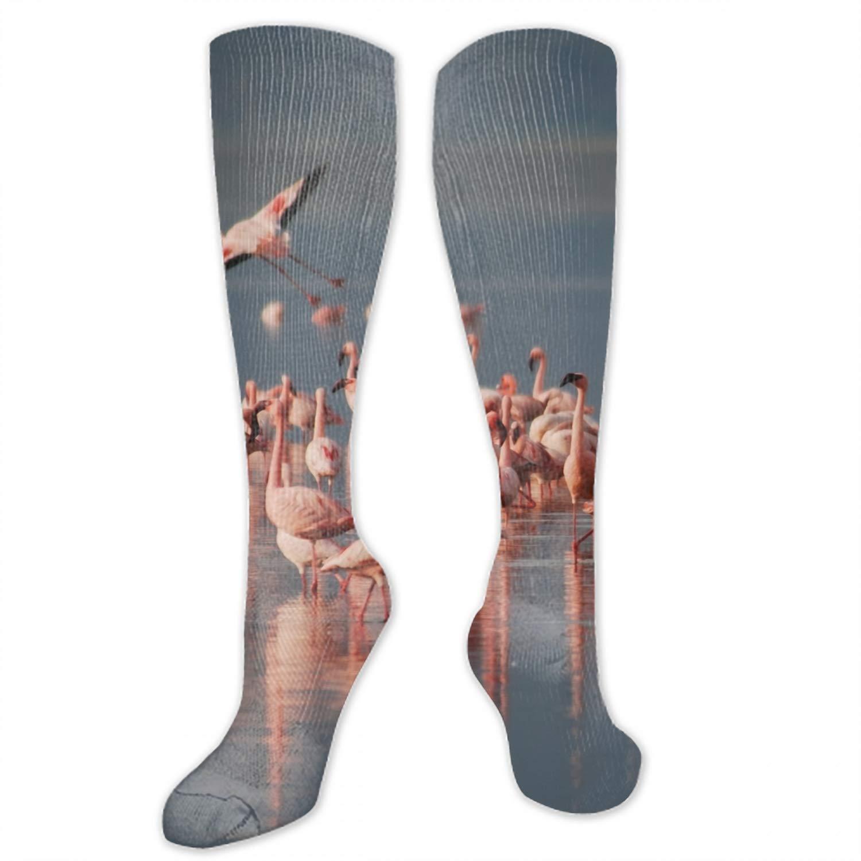 Flamingo In The Lake Digital Painting Unisex Novelty Crew Winter Socks For Women Compression Socks