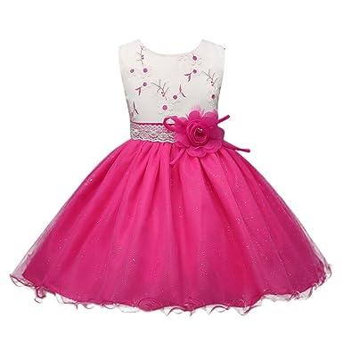 155ad107292c Rawdah Flower Girls O-Neck Princess Flower Mesh Dress Kids Mesh ...