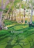 Eifionydd by R. Williams Parry