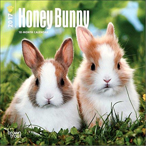 Honey Bunny Mini Calendar 2017 product image