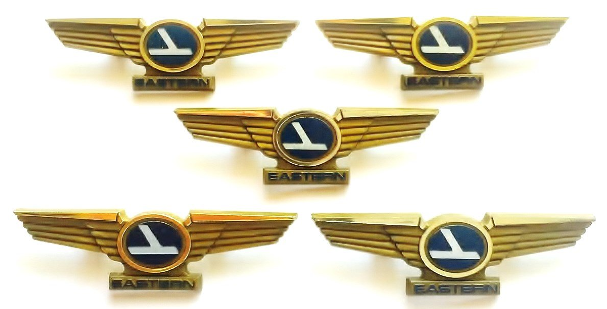 Buy Aviator Kids Vintage Airlines Plastic Pilot Wing Pins Lot Of 5 Online  at Low Prices in India - Amazon.in