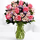 ProFlowers - Free Shipping 17 Count Pink Pink Sapphire w/Free Vase - Flowers
