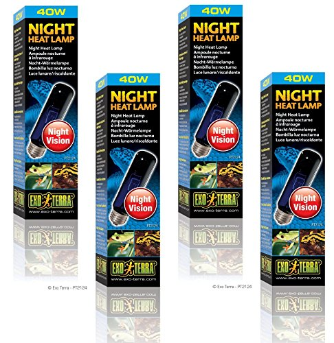 (4 Pack) Exo Terra Night-Glo Moonlight Lamp, 40 Watt