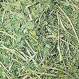 Small Pet Select Alfalfa Hay Pet Food, 2