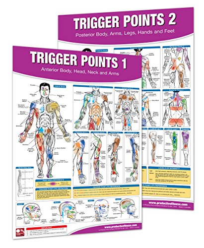 Trigger Point Therapy Chart/Poster Set; Acupressure Charts - Myofascial Trigger Points - Massage Therapy Charts - Muscle Pain Relief Posters - ... Neuromuscular Therapy - Physiotherapy ()