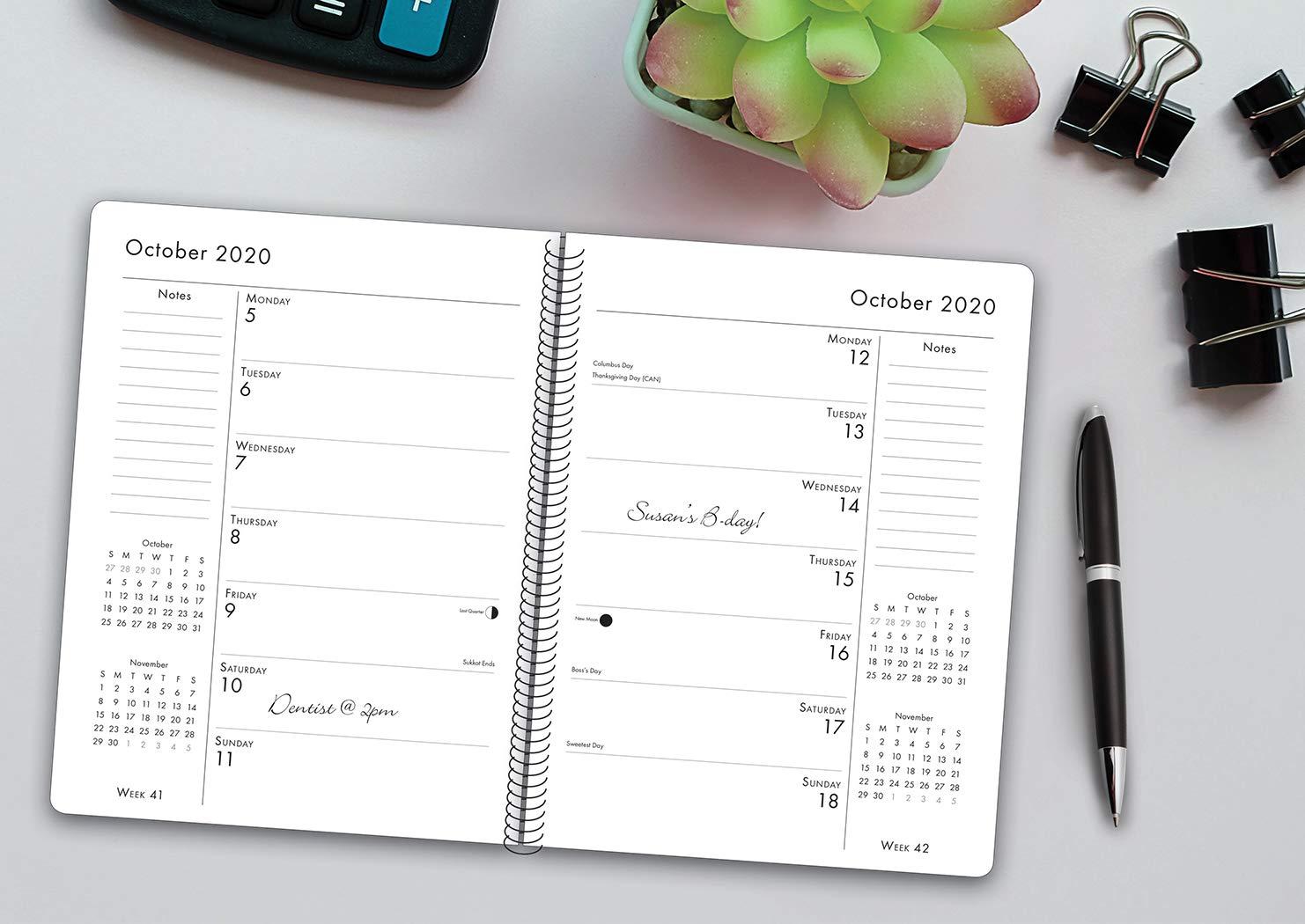 What-Goldens-Teach-Us-2020-Engagement-Calendar-Dog-Breed-Calendar