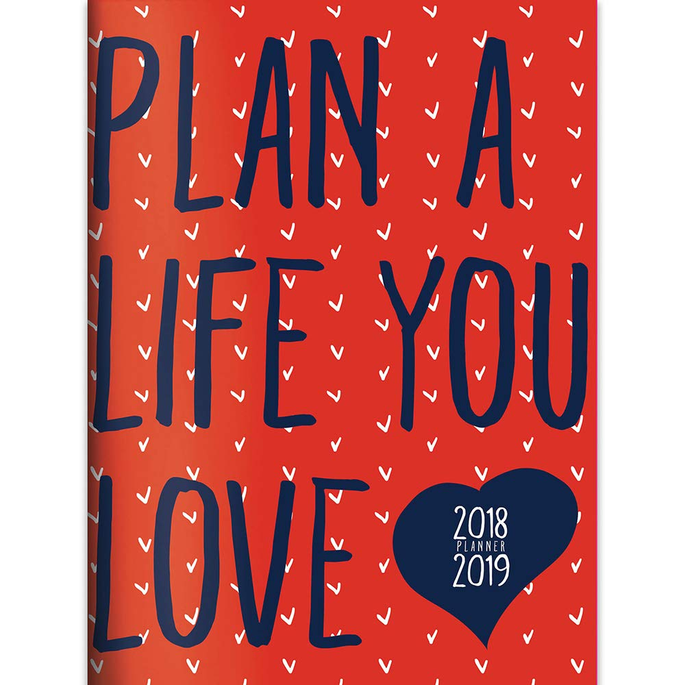 TF Publishing 19-4040A July 2018 - June 2019 Plan the Life You Love Monthly Planner, 7.5 x 10.25, Red & Blue