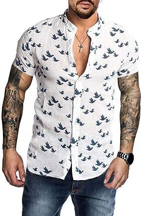 Camisas de Lino Hombre - Tops de Lino livianos Camisetas Ajustadas para Hombres Camisas de Lino de Manga Corta de Verano: Amazon.es: Ropa y accesorios