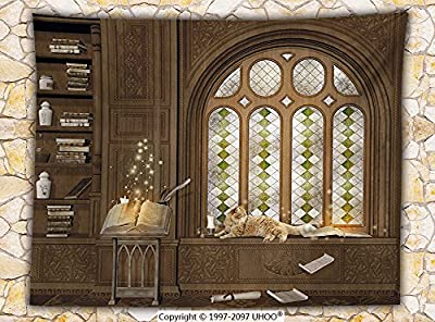 Gothic Decor Fleece Throw Blanket Room for Study in Medieval Library with Cat Sleeping on Window Antique Mansion Throw Taupe