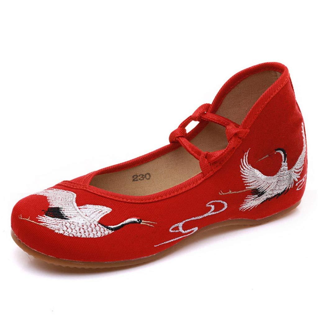 XHX Chaussures De Broderie Plates Chaussures Élégantes Mode Taille Dentelle Chaussures De Tissu Respirant À Talon Bas Chaussures De Femmes en Dentelle Rétro (Couleur : Red, Taille : 37) Red 5c3fad2 - piero.space