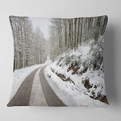 Designart CU14646-18-18 Snow Storm at Piornedo Spain' Landscape Printed Throw Cushion Pillow Cover for Living Room, Sofa, 18'' x 18'' by Designart