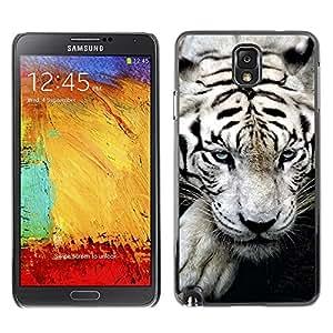 TECHCASE**Cubierta de la caja de protección la piel dura para el ** Samsung Galaxy Note 3 N9000 N9002 N9005 ** Tiger White Big Stripes Albino Wild Blue Eyes