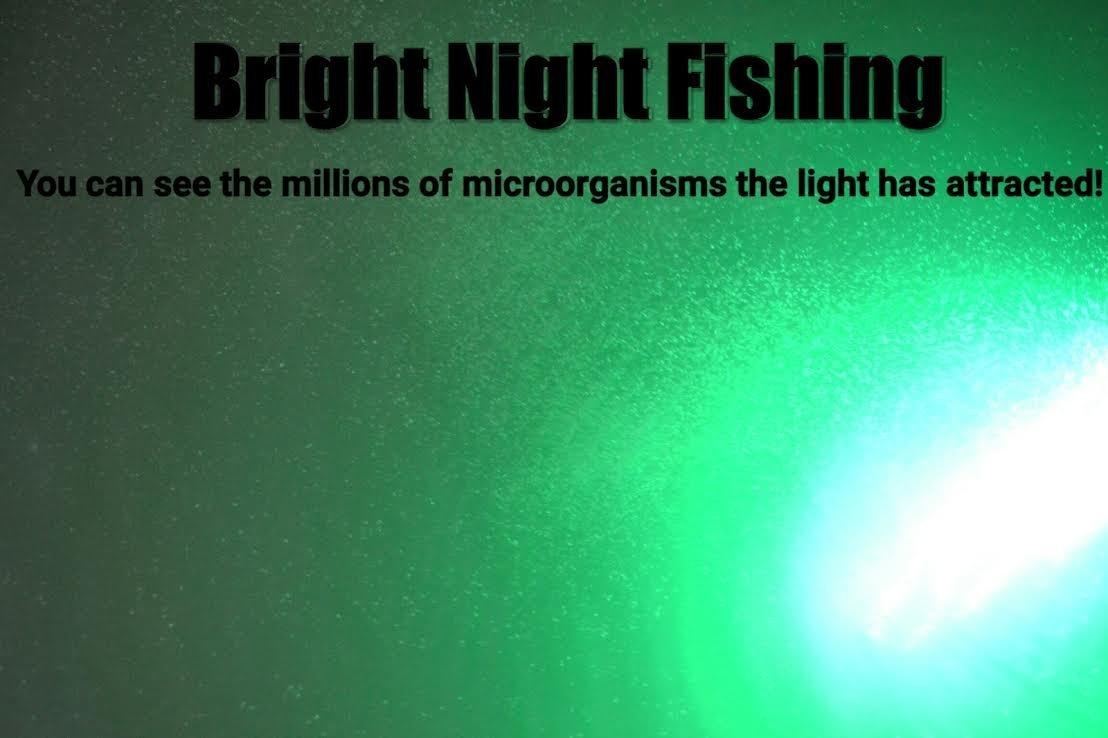 Bright Night Fishing Under Water Light Green Led 15000 Lumens Night Fishing 300 LED Green Priority Shipping Submersible Salt fresh water dock light boat crappie 12v dc (optional 110v ac) BR:15000