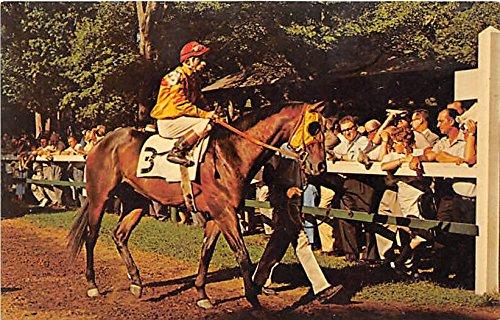 (Parade Circle, Saratoga Track Saratoga Springs, New York, NY, USA Old Vintage Horse Racing Postcard Post Card)
