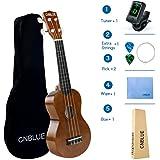 Soprano Ukulele for Beginner Ukulele Starter Kits 21 Inch Hawaii Ukulele with Tuner, Bag, Picks, Extra String, Wipe (Brown)