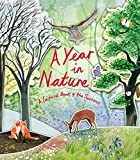 Nature In Natures - Best Reviews Guide