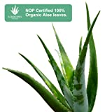 Aloderma Pure Aloe Vera Gel - Soothes and