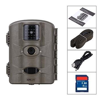 Cámara de Caza Visión Nocturna 12MP 720P HD LEDS IR 24 pcs Cámara para cazar Impermeable